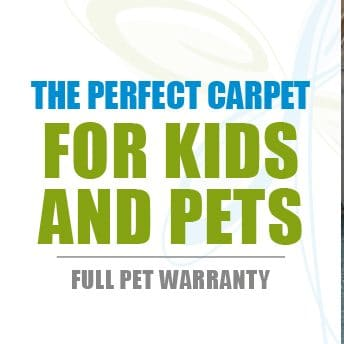 SmartStrand is the Best Carpet Fibre on the Market